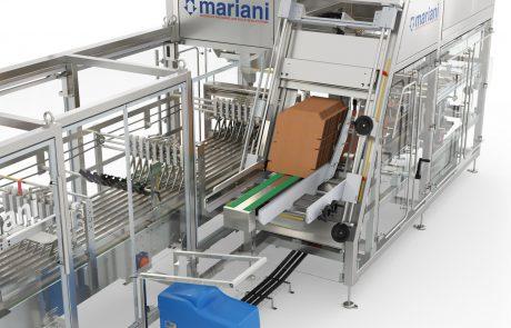 IMW-332 Depósito de cartones - Mariani Srl